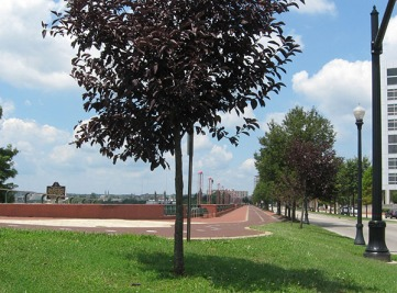 promenade and bike trail