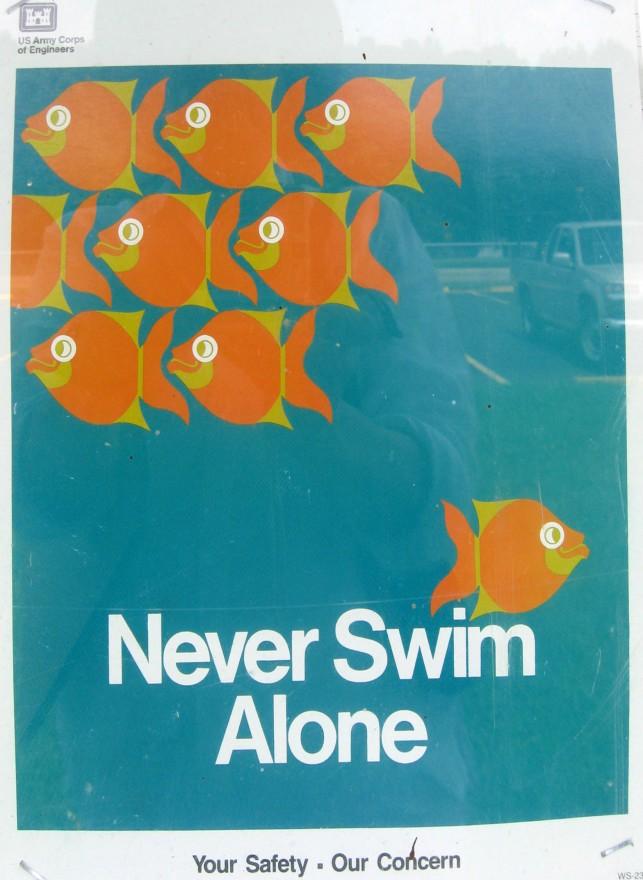 never swim alone