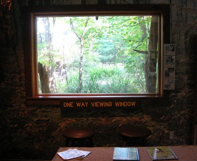 one way viewing window