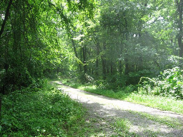 901 5 IL Pope Golconda Rauchfass Hill SRA road 600 8 high